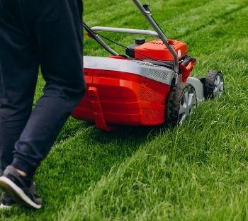 tondre pelouse master net domicile